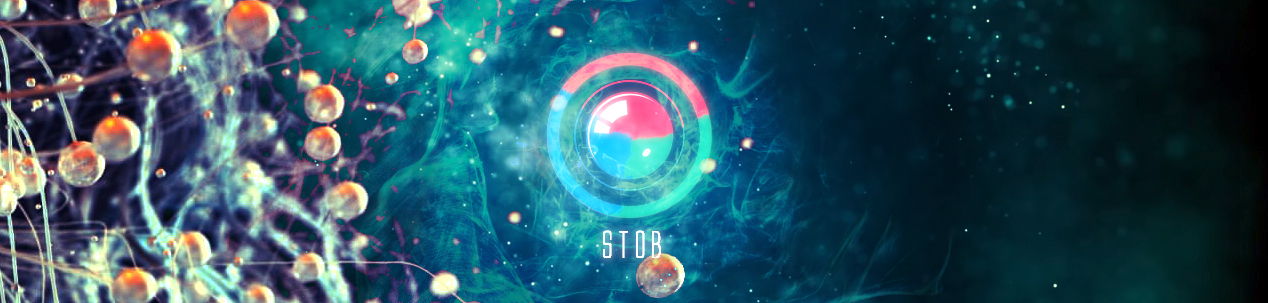 stob company2.jpg